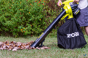 Best Leaf Vacuums
